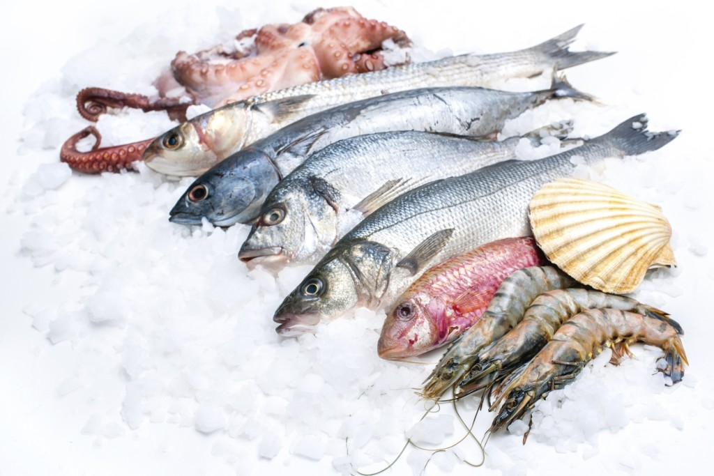 Fisch Amp Meeresfr 252 Chte Pastaweb De