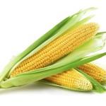 Mais stammt ursprünglich aus Mexiko.