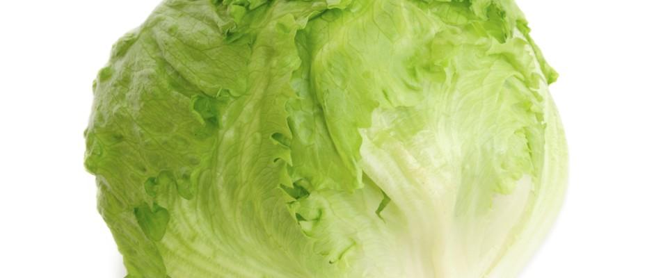Der Eisbergsalat ist gesund. Auch Vitamin A, C, B1 und B2 sind enthalten.