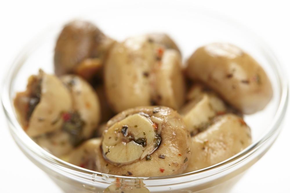 Rezepte eingelegte champignons