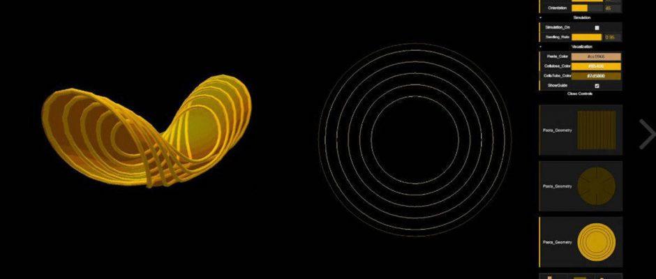 Das Massachusetts Institute of Technology hat platzsparende Nudeln entwickelt, die sich erst beim Kontakt mit Wasser in Form rollen. Foto: Vimeo/MIT